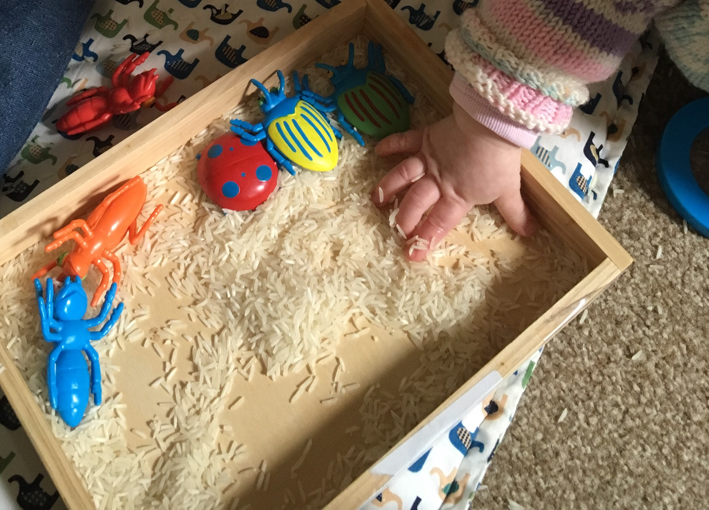 Sensory play with rice and bugs a tray