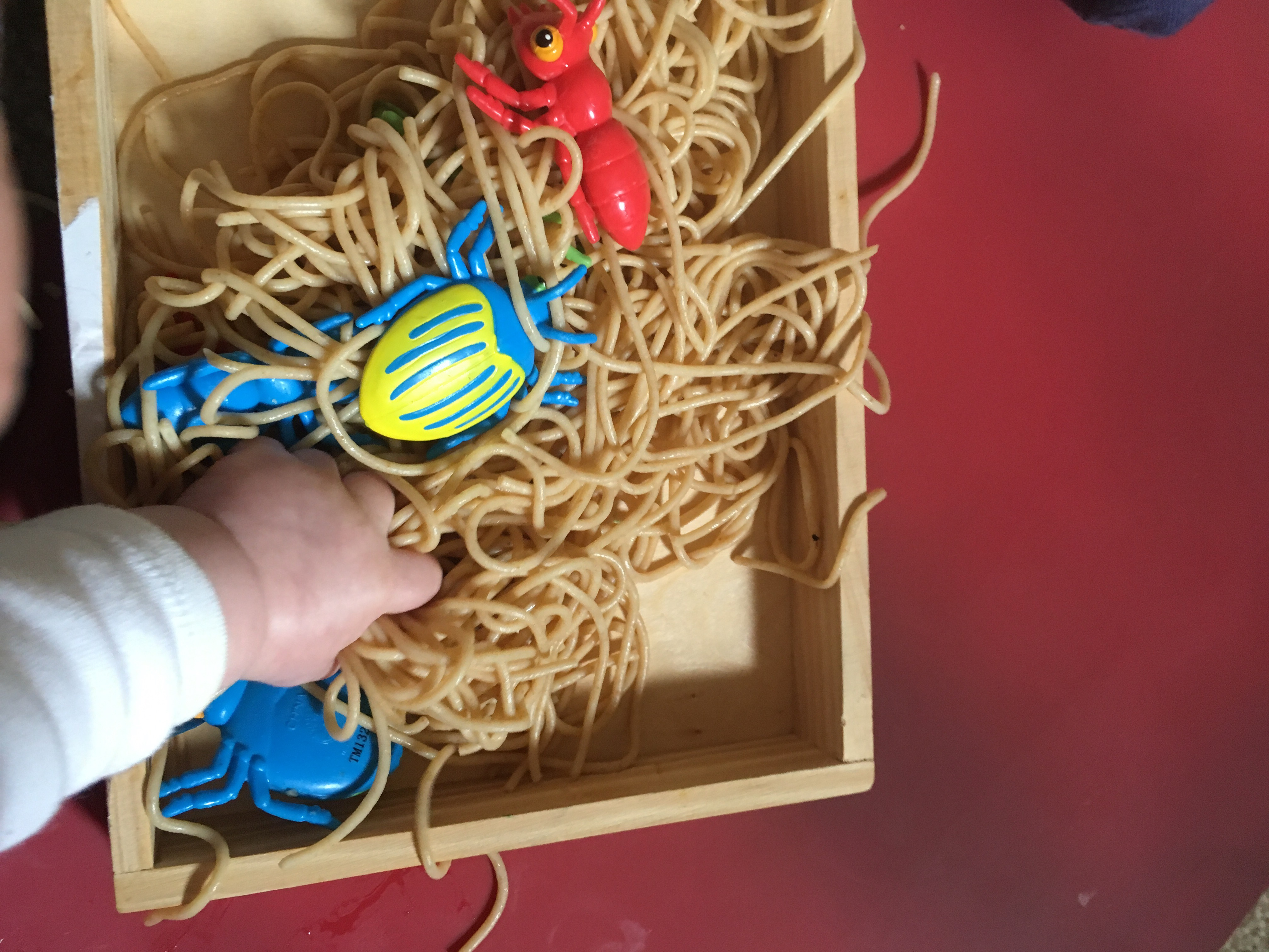 Sensory play for babies with a spaghetti and bug tray
