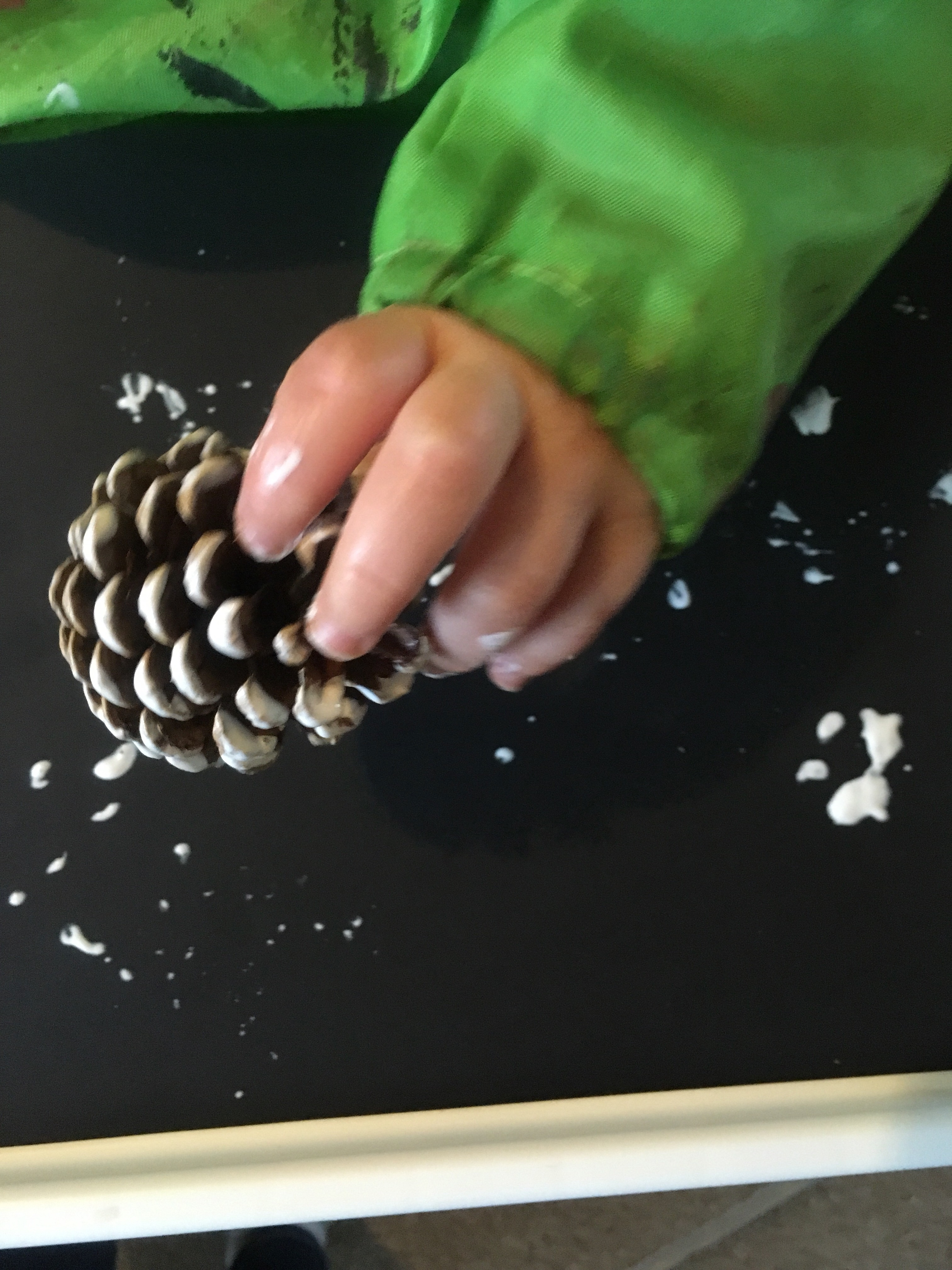 Its Hard To Think Up Painting Ideas That Babies Can Actually Do This Simple Way Was Perfect As It Made 2 In 1 Masterpieces A Pine Cone Rolled Into White