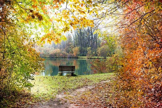autumn-986350_640.jpg