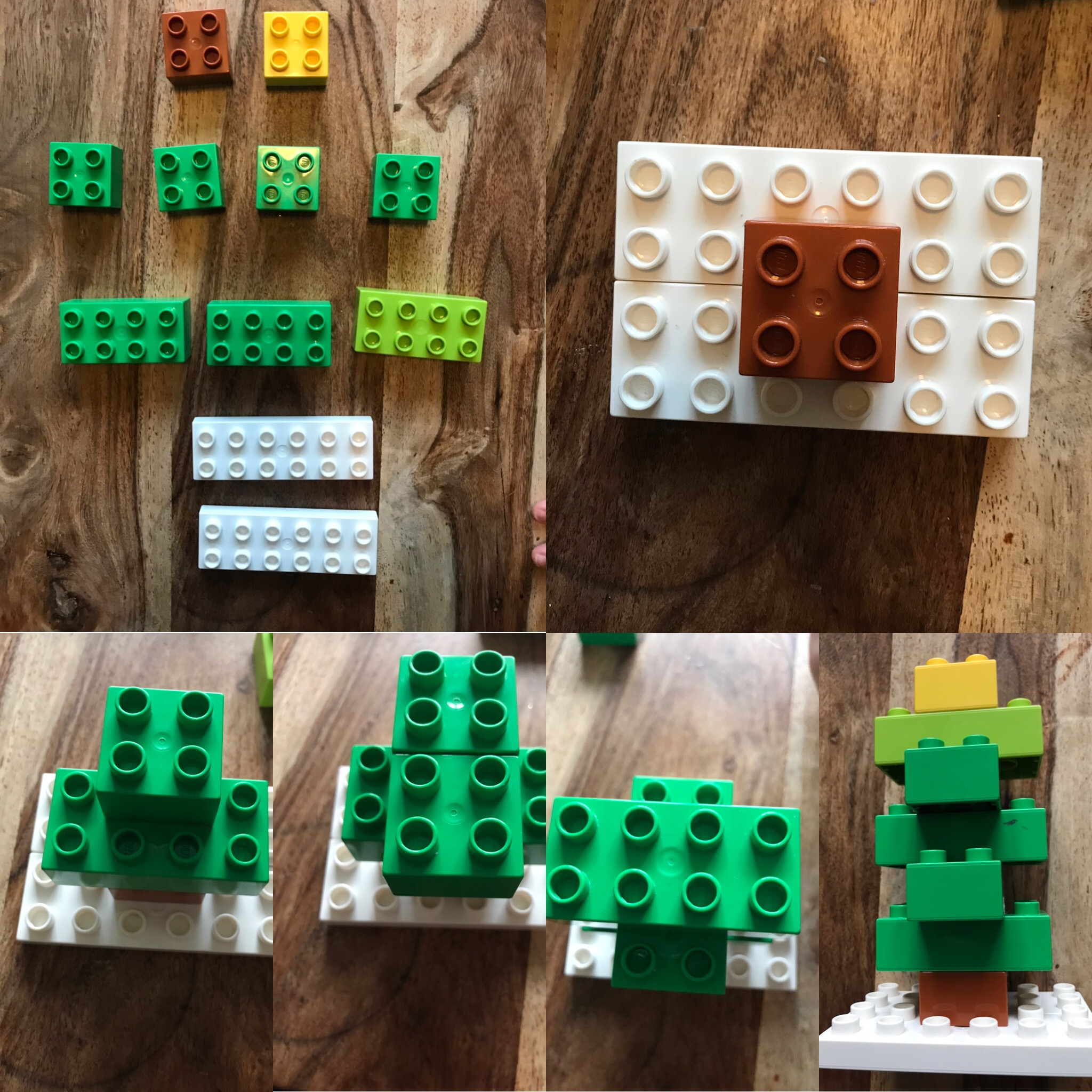Duplo build