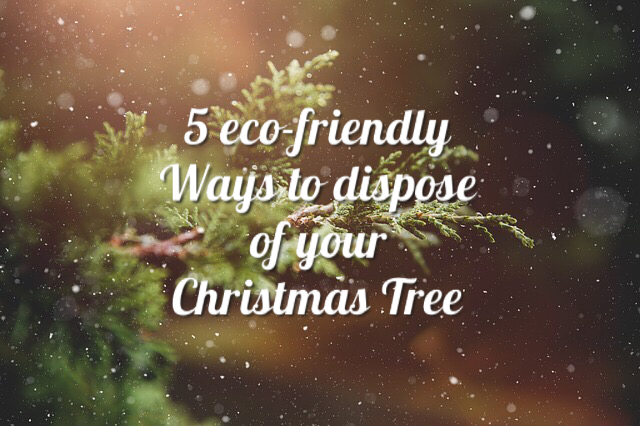 5 Ways To Dispose Of Your Christmas Tree