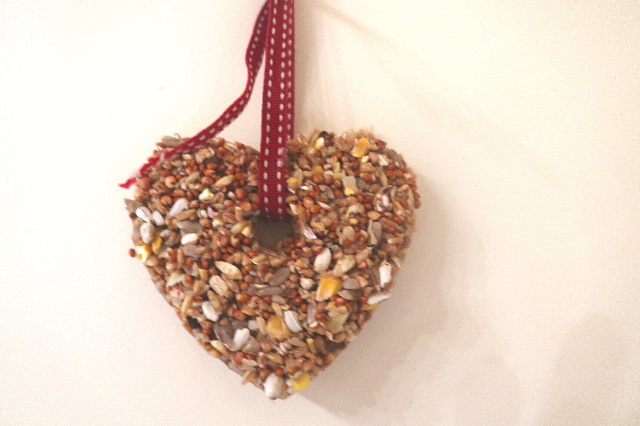 A heart shaped easy homemade bird feeder