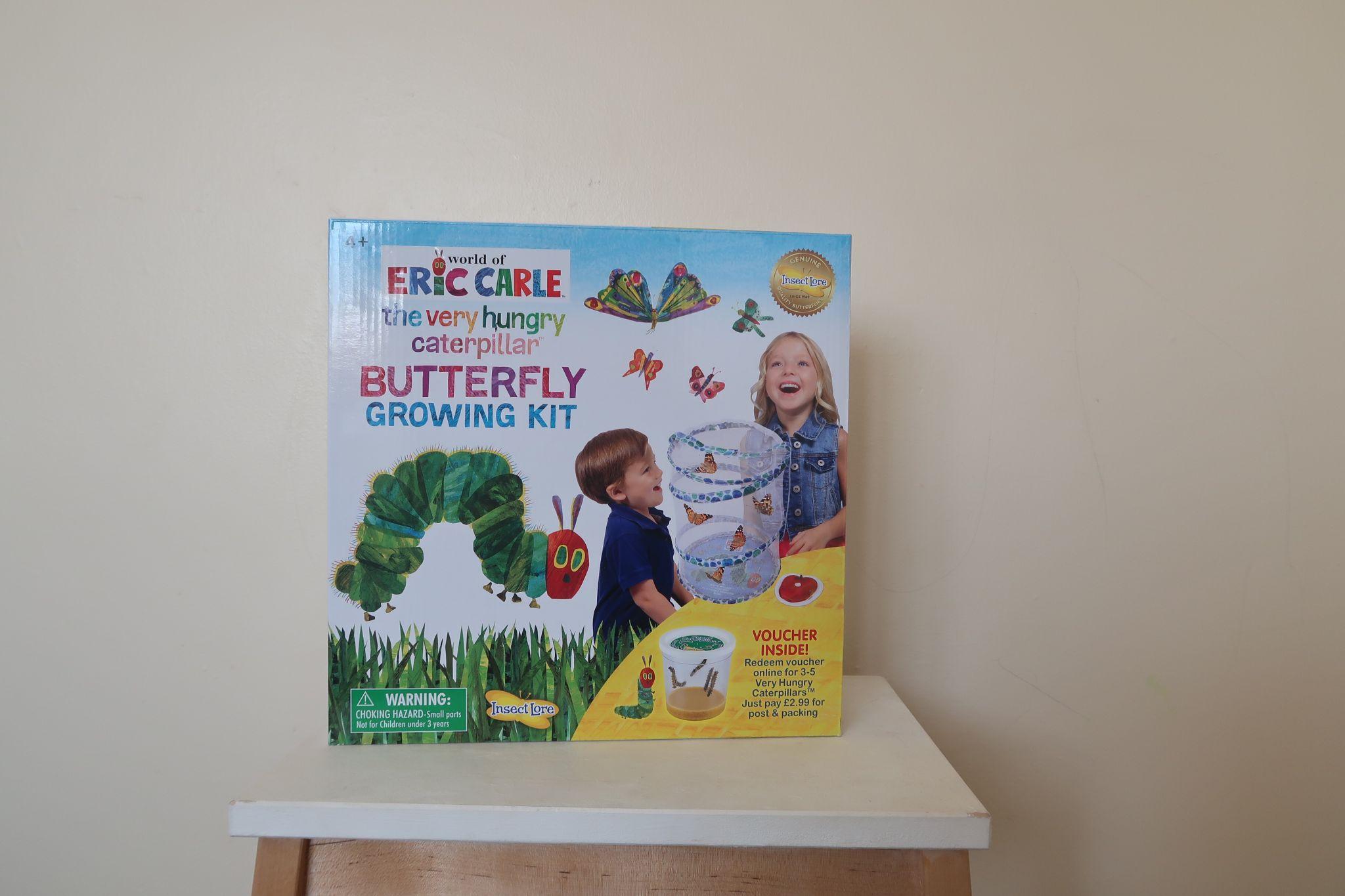 A kids butterfly kit
