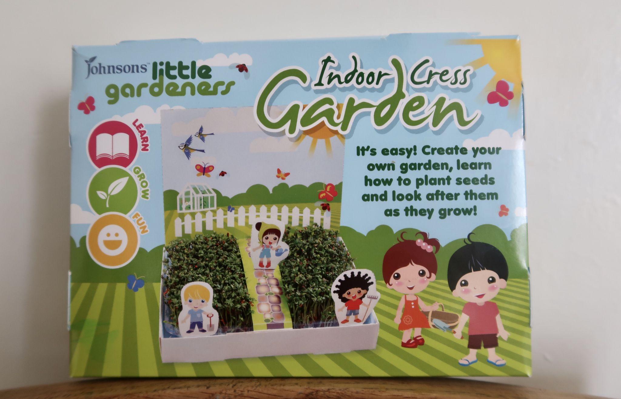 A box set of kids cress to grow