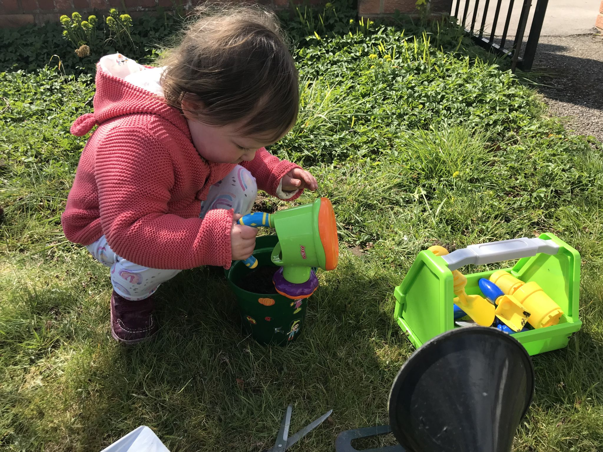 A toddler gardening with a