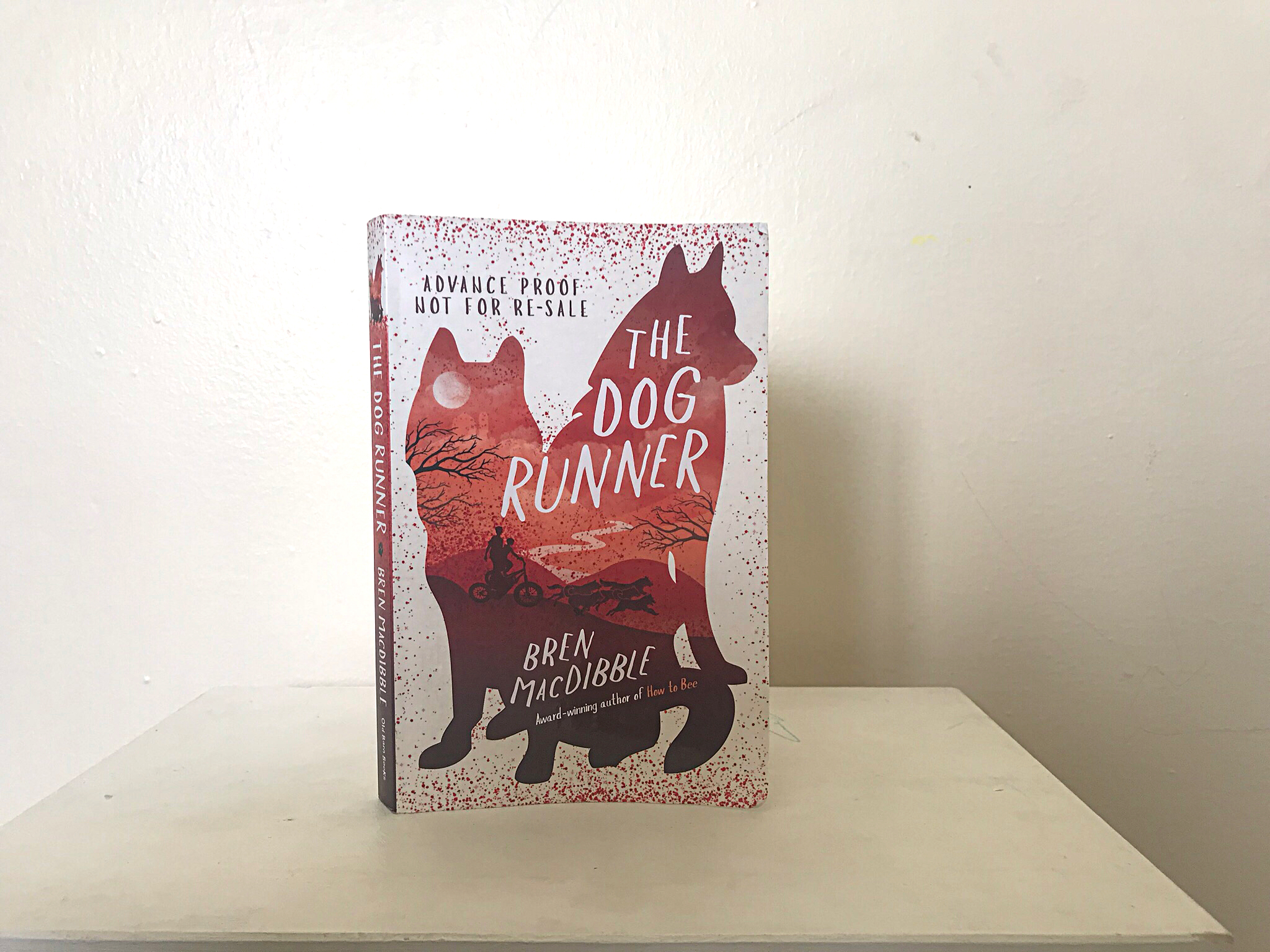A picture of a book called the dog runner