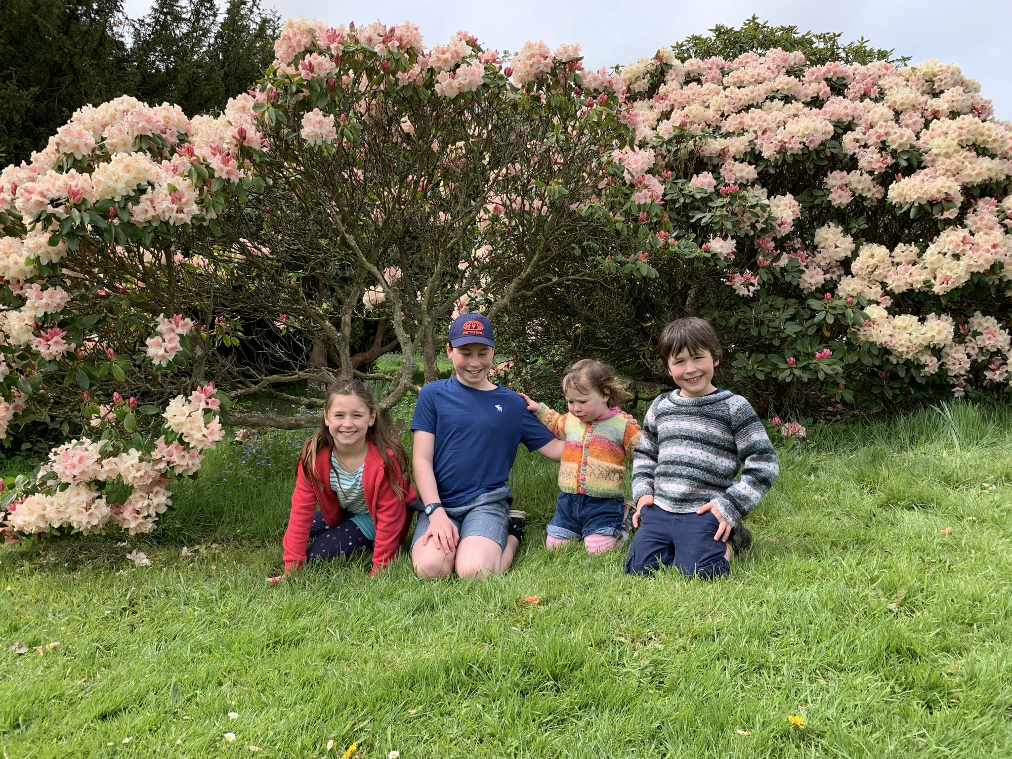 Four children having a photo by some pink flowers