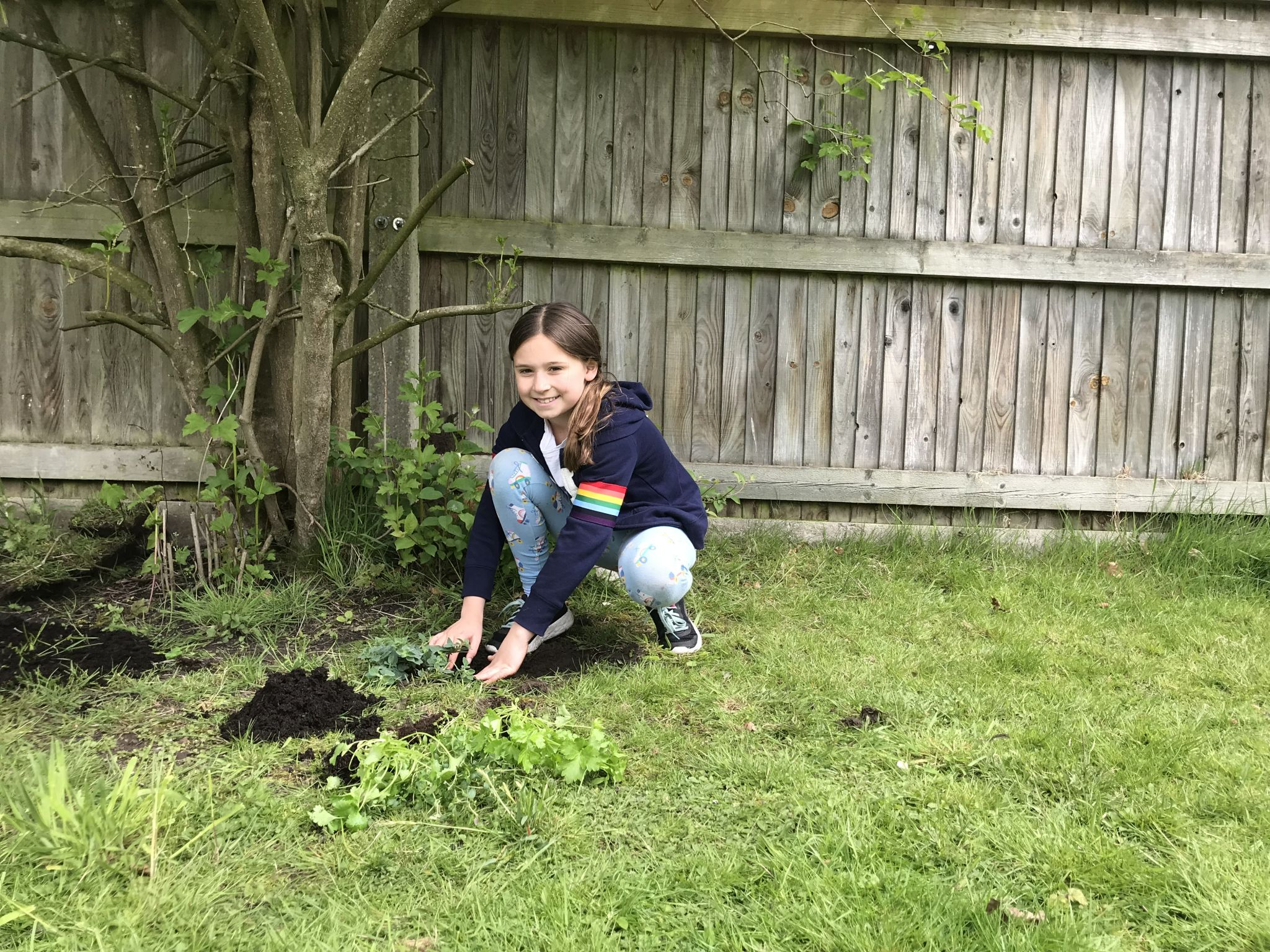 a child planting herbs in a garden