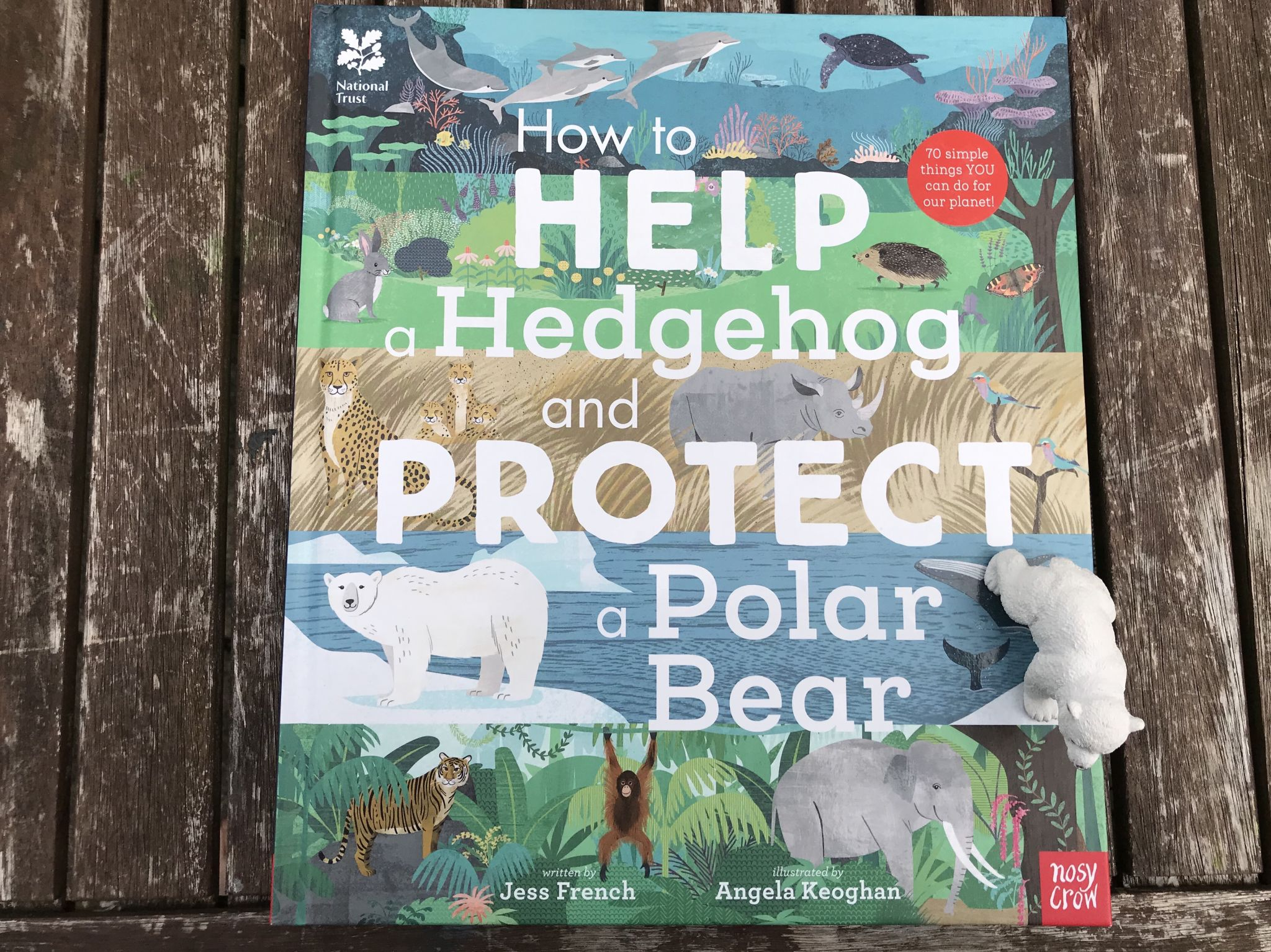 The book how to help a hedgehog and protect a polar bear