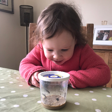 A child looking at a cup of caterpillars
