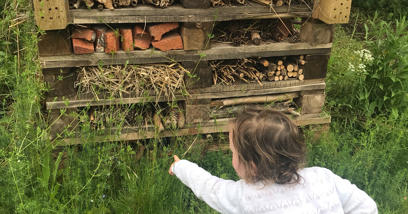30 simple ideas fro 30 days wild with a child looking at a bug house