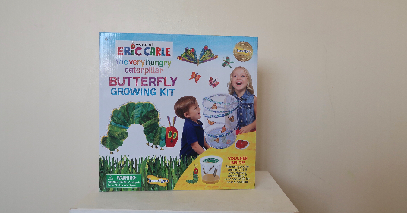 A butterfly kit in a box