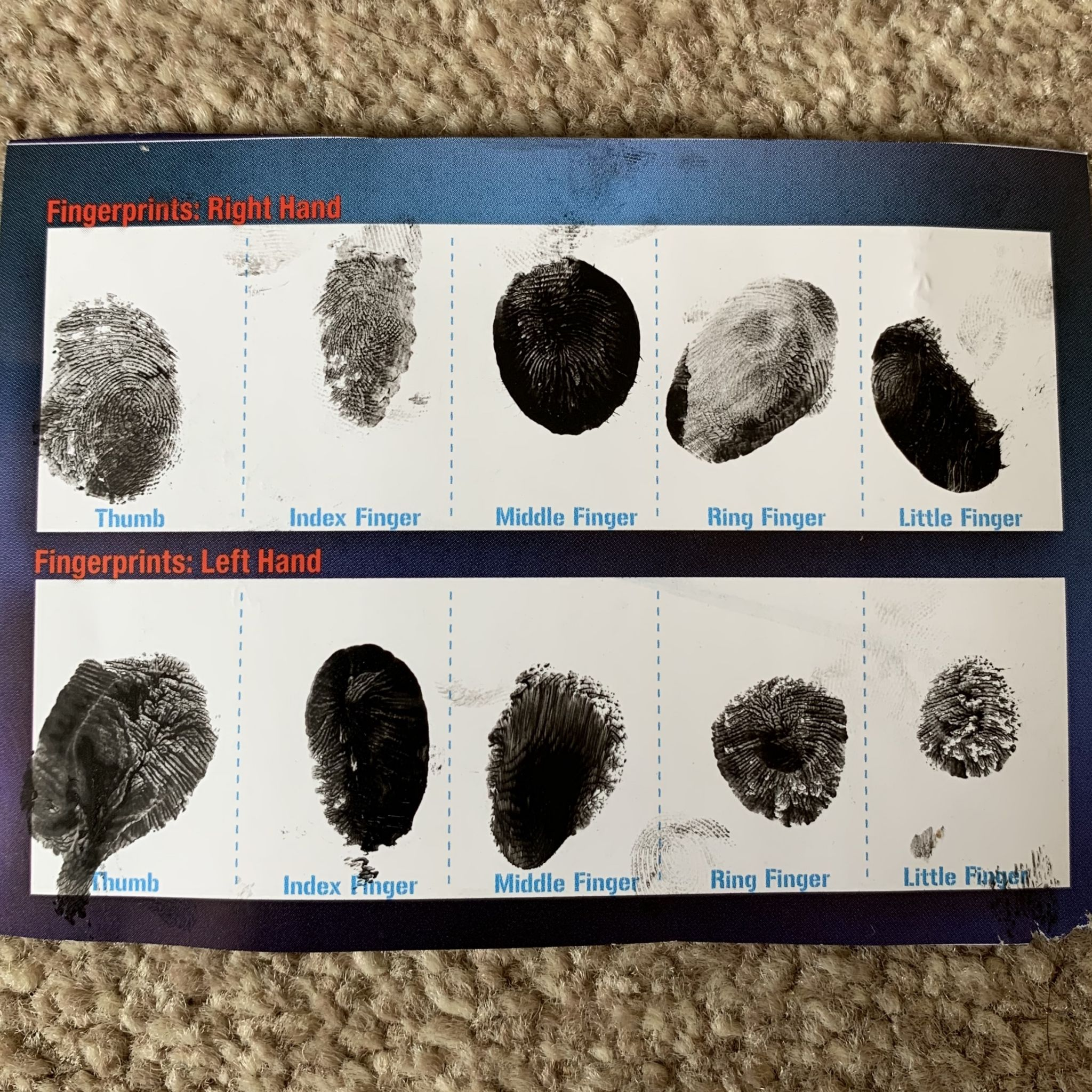 fingerprints on a card