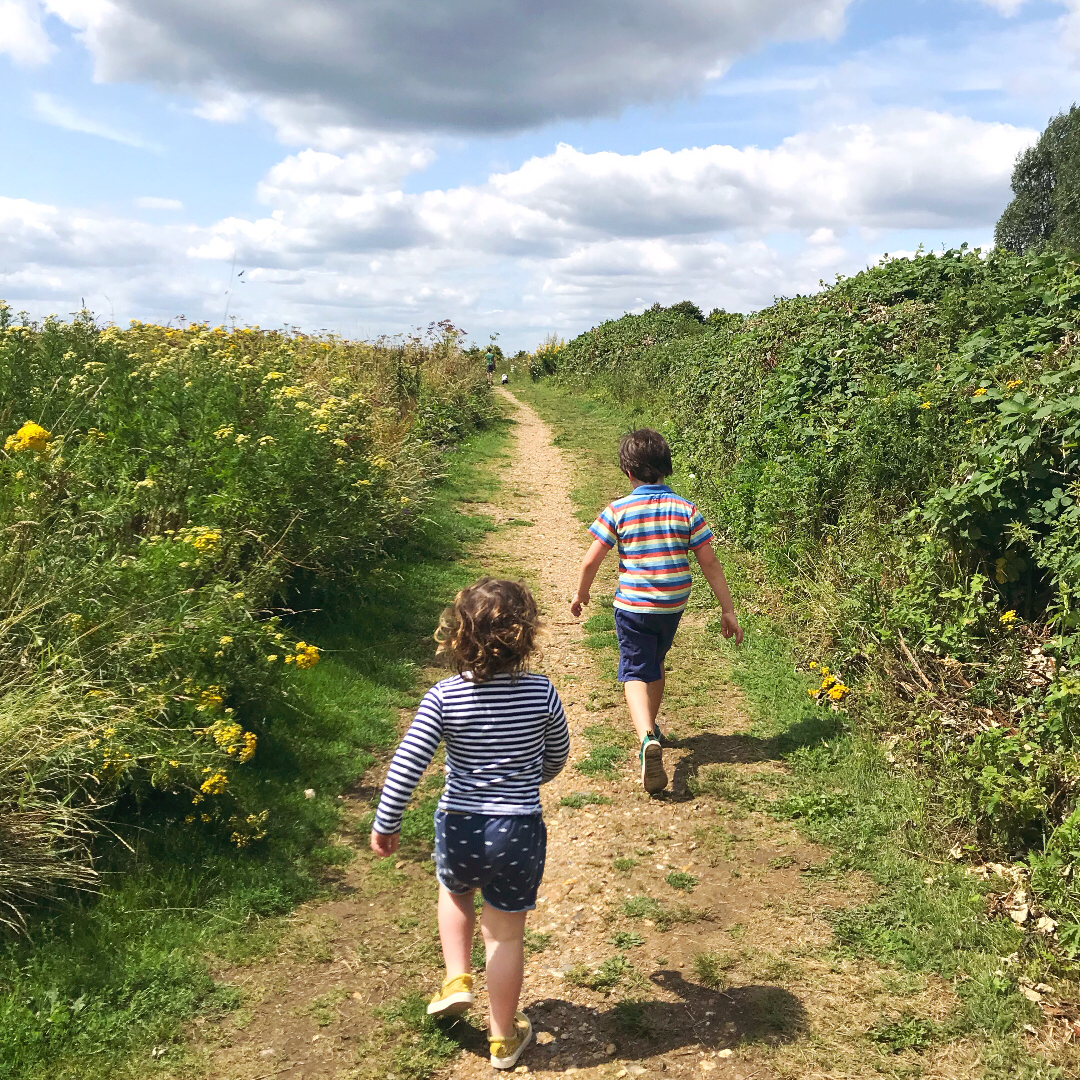 Two children out for a walk in a field in the sunshine