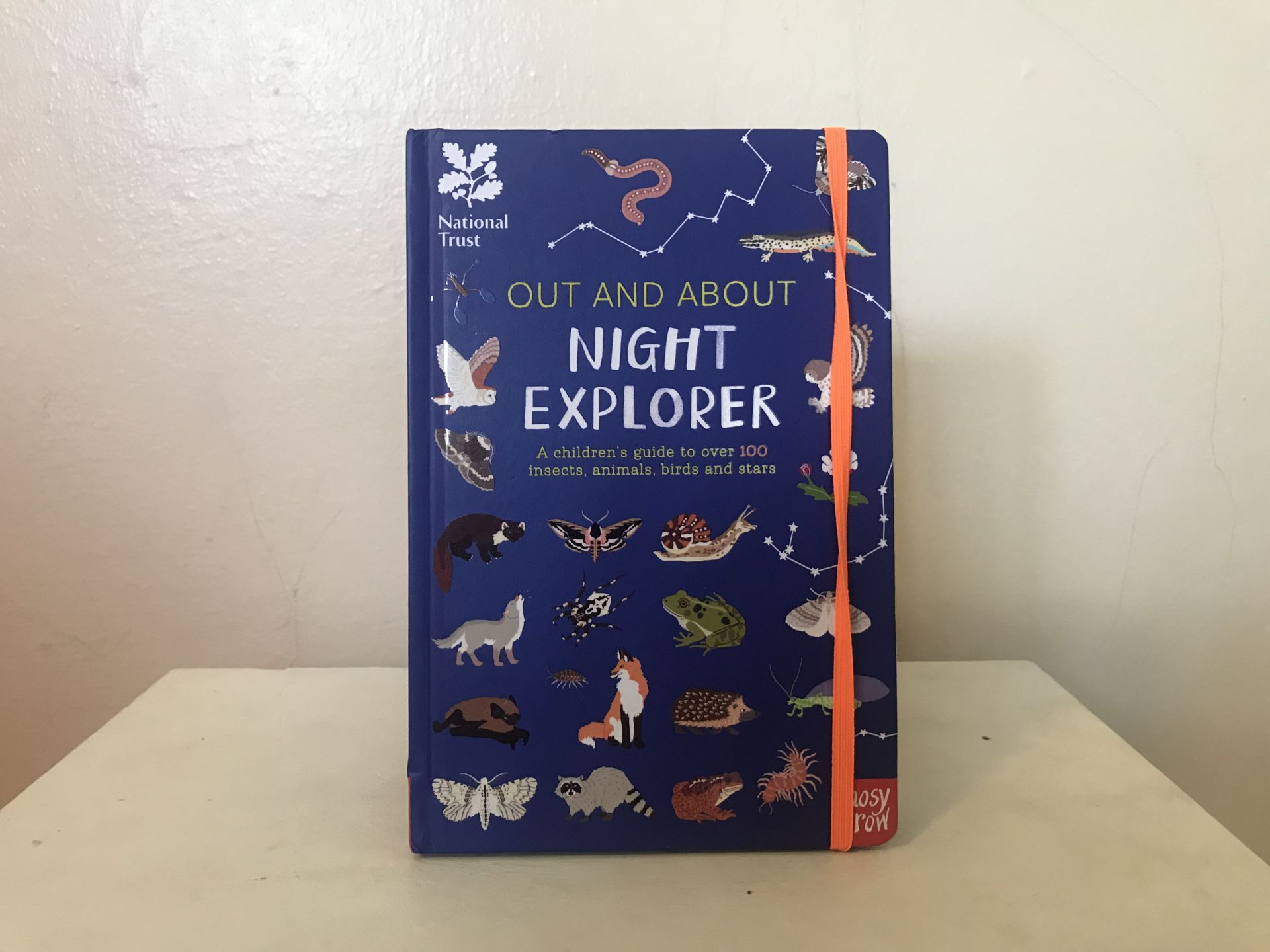 A nighttime explorer book for kids