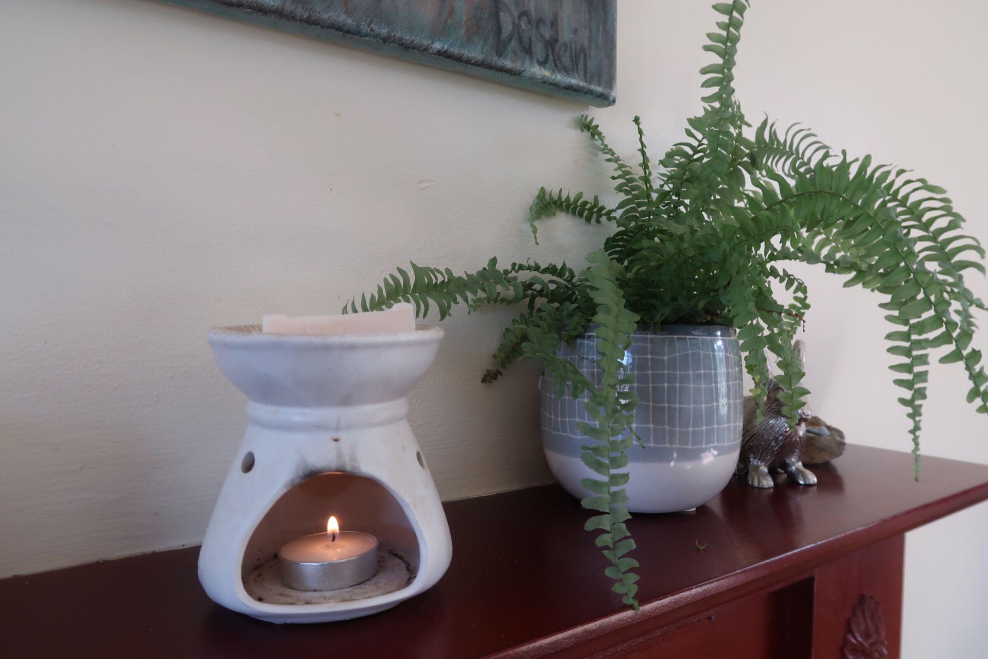 a candle burner lit next to a plant on a shelf