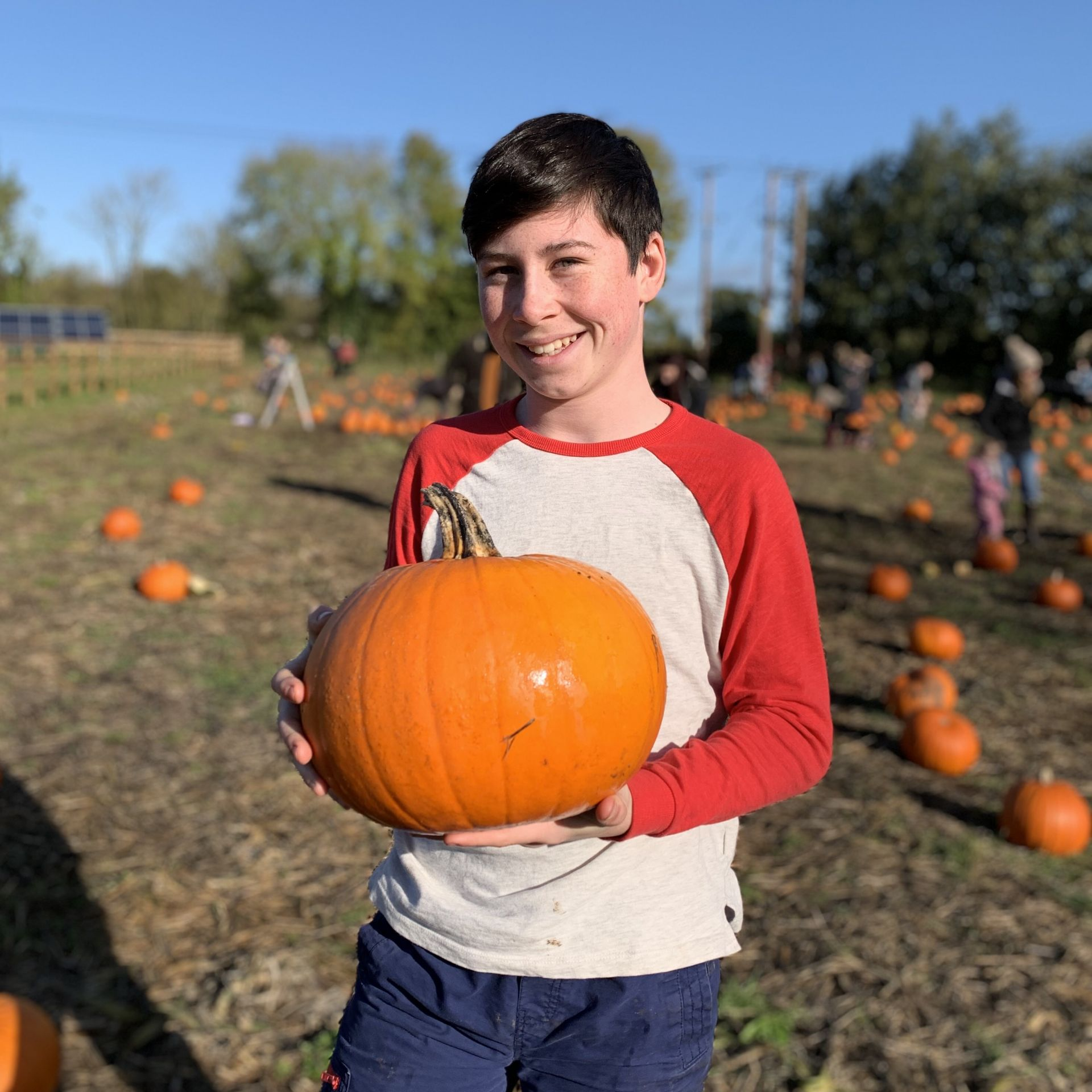 Boy smiling and holding a pumpkin