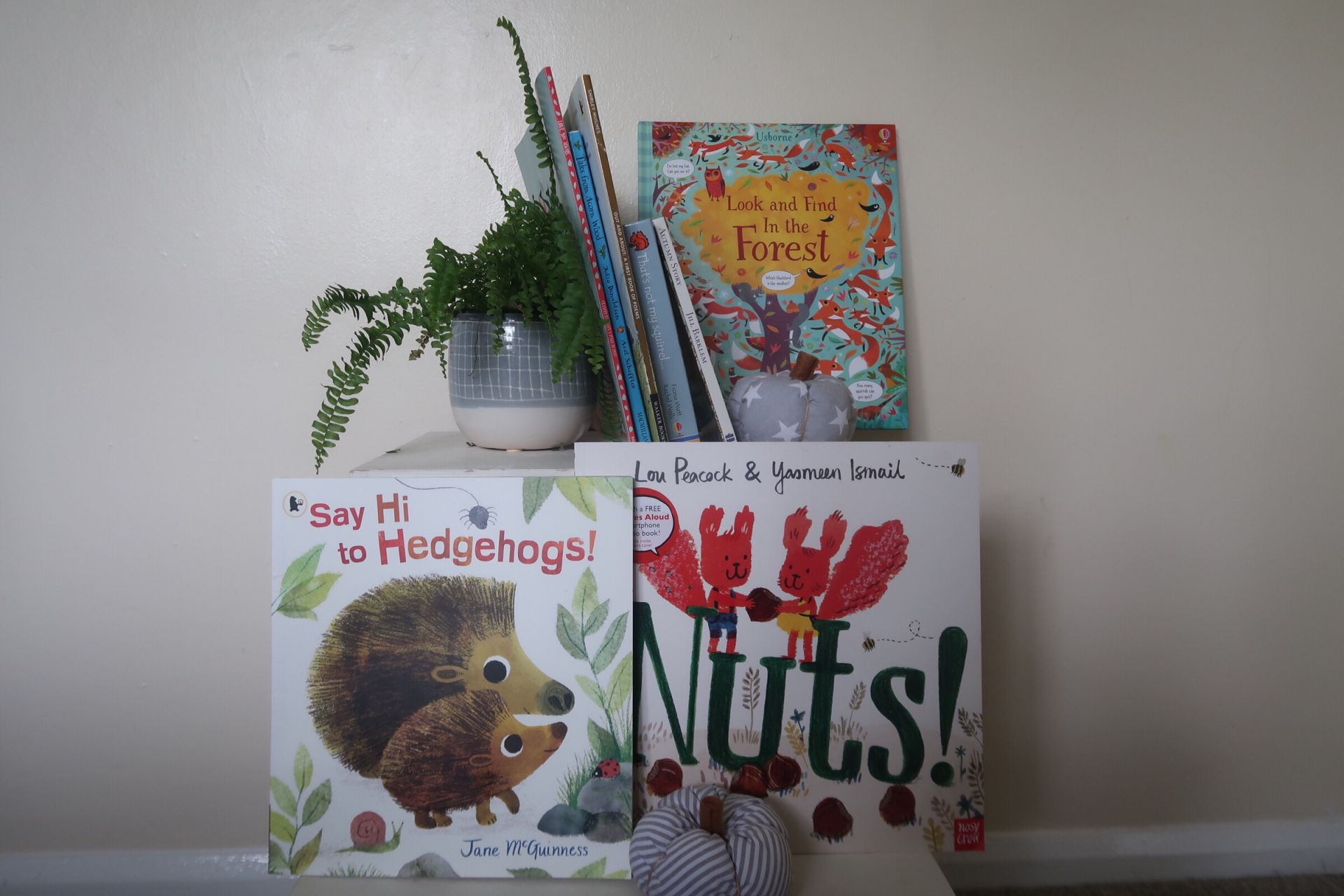 A book shelf and plant with kids books on