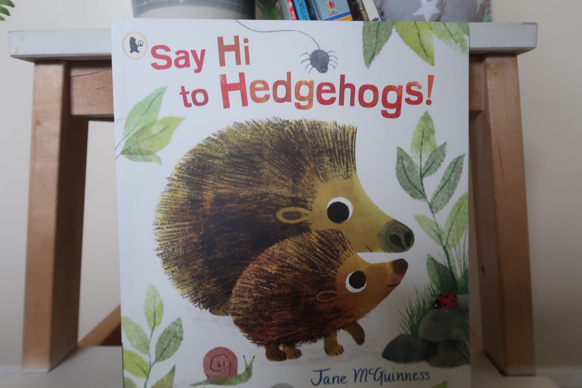 A hedgehog kids book