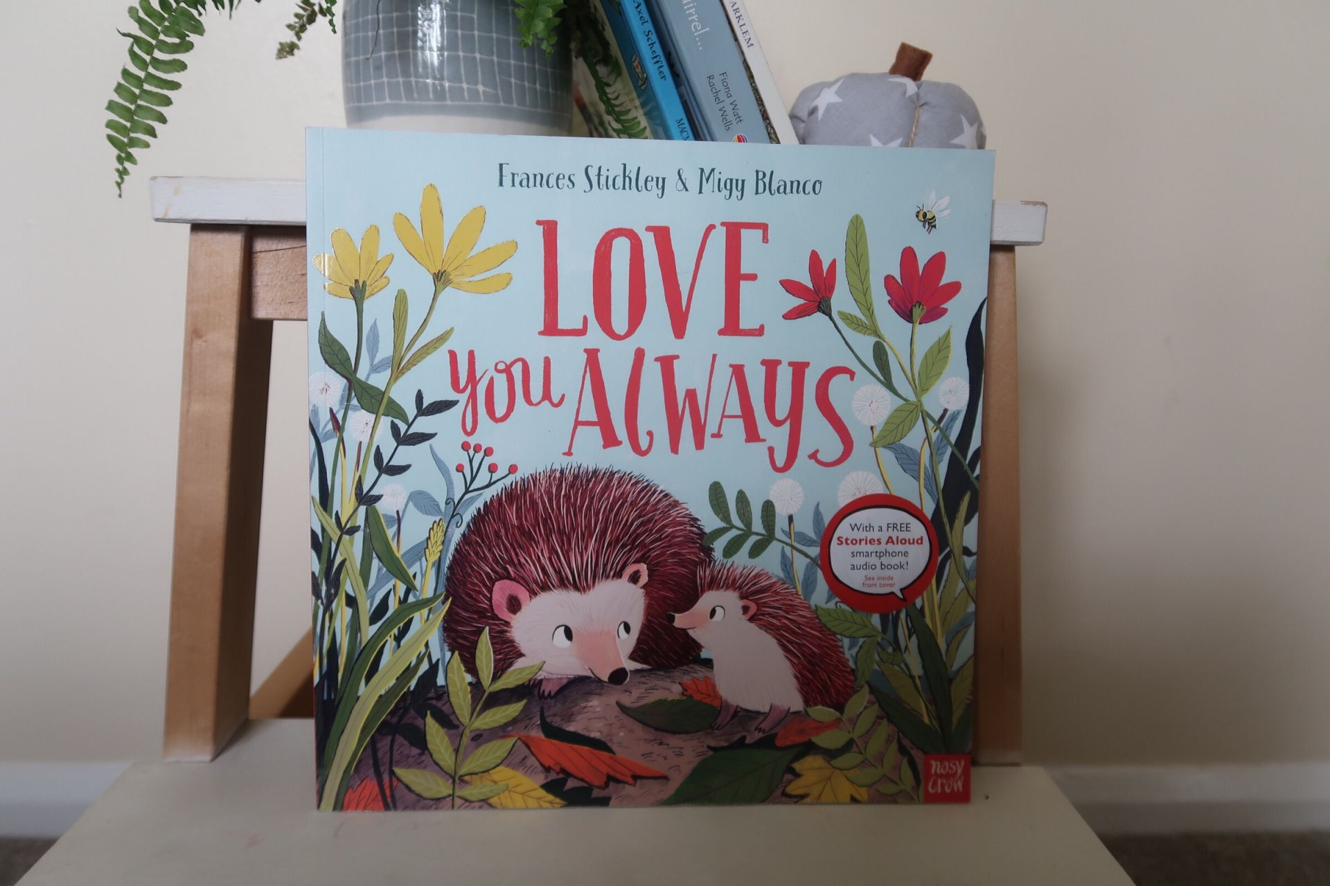 Love you Always hedgehog book