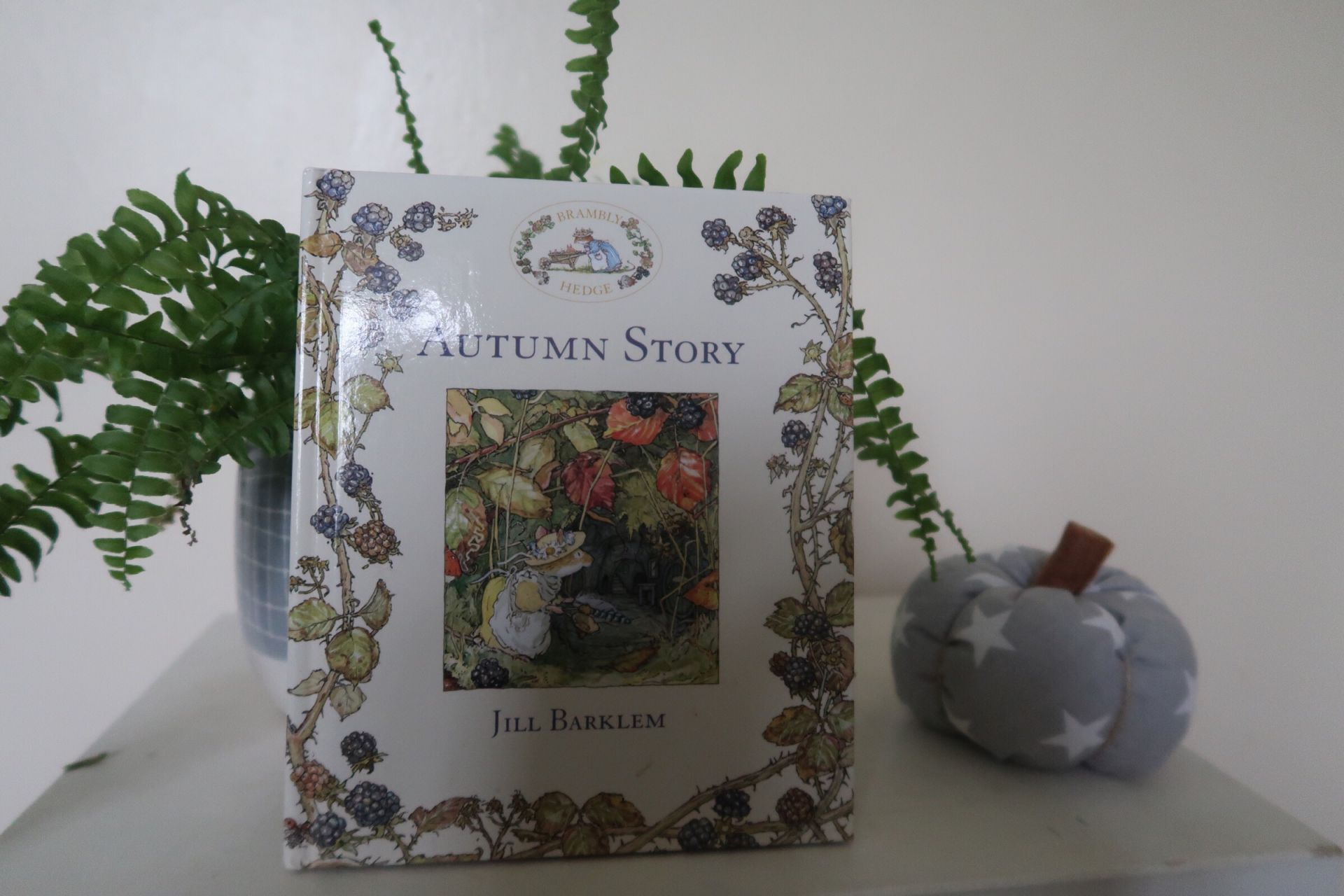 An Autumn story book for kids