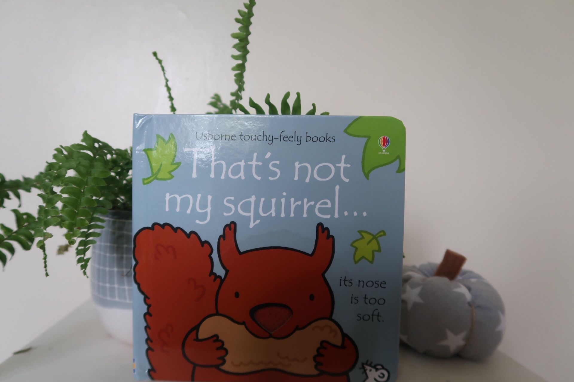 a toddler squirrel book