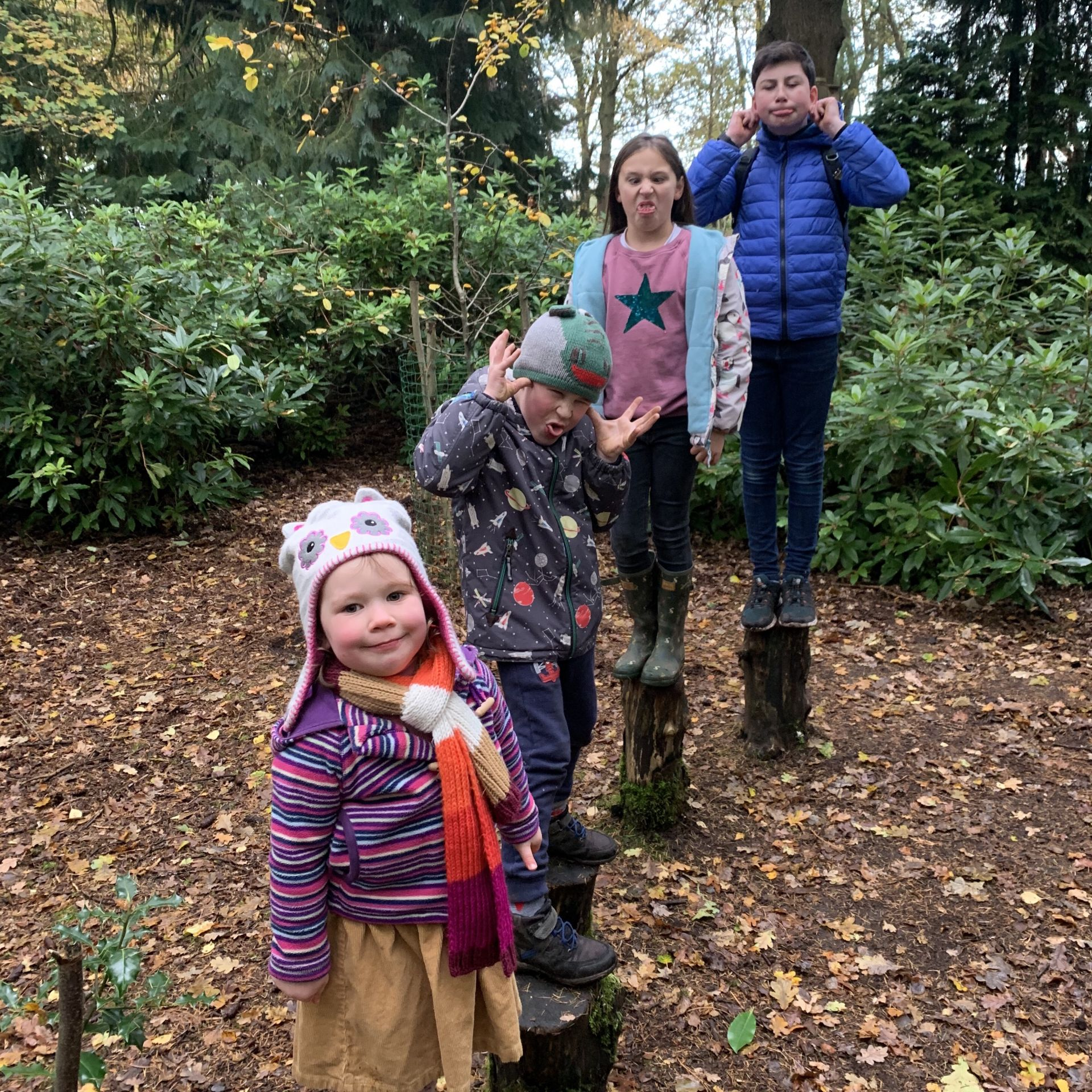 4 children pulling silly faces stood on tree stumps