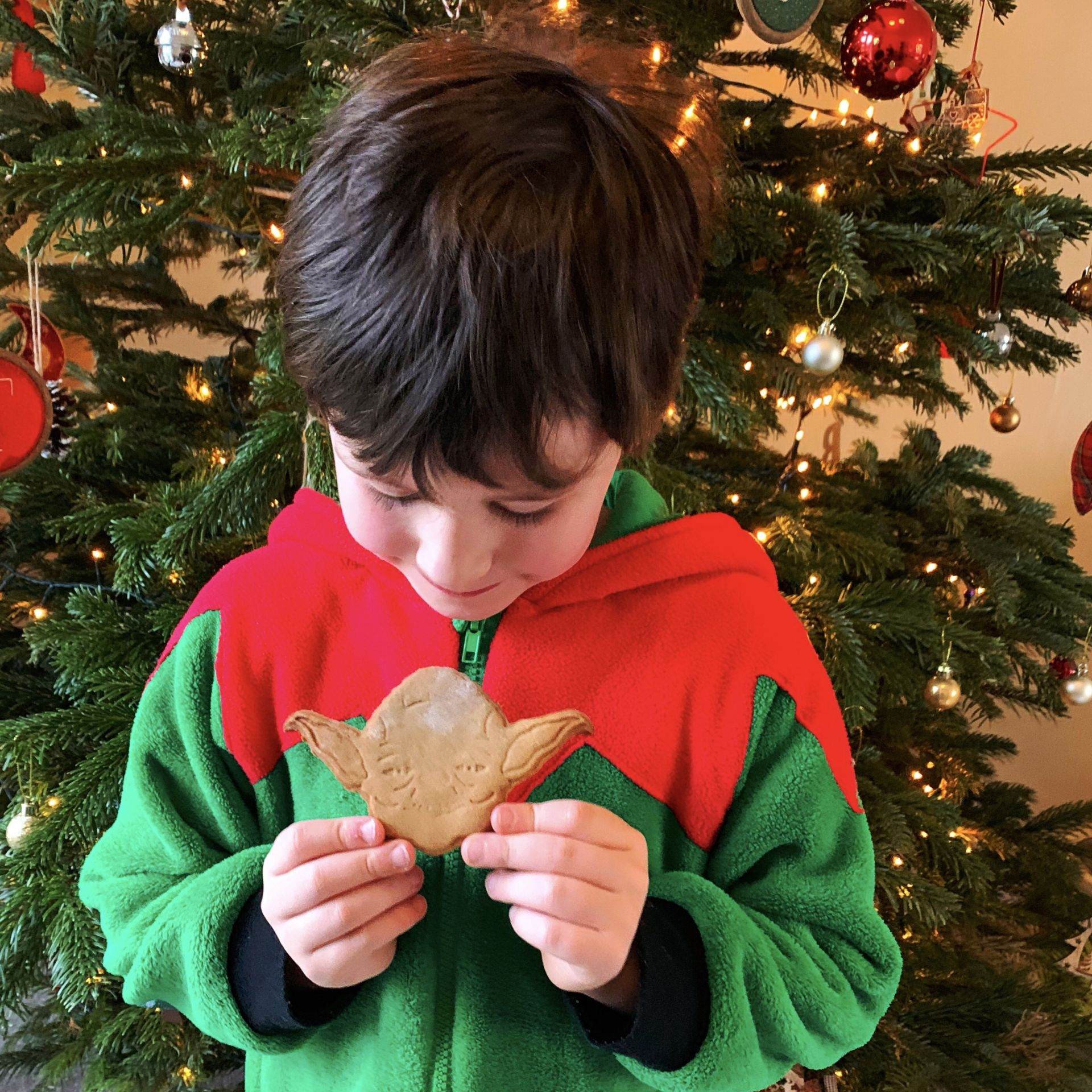 A boy holding a Yoda gingerbread biscuit