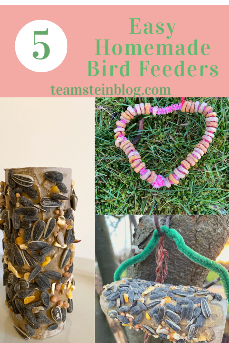 5 easy homemade bird feeders pinterest pin