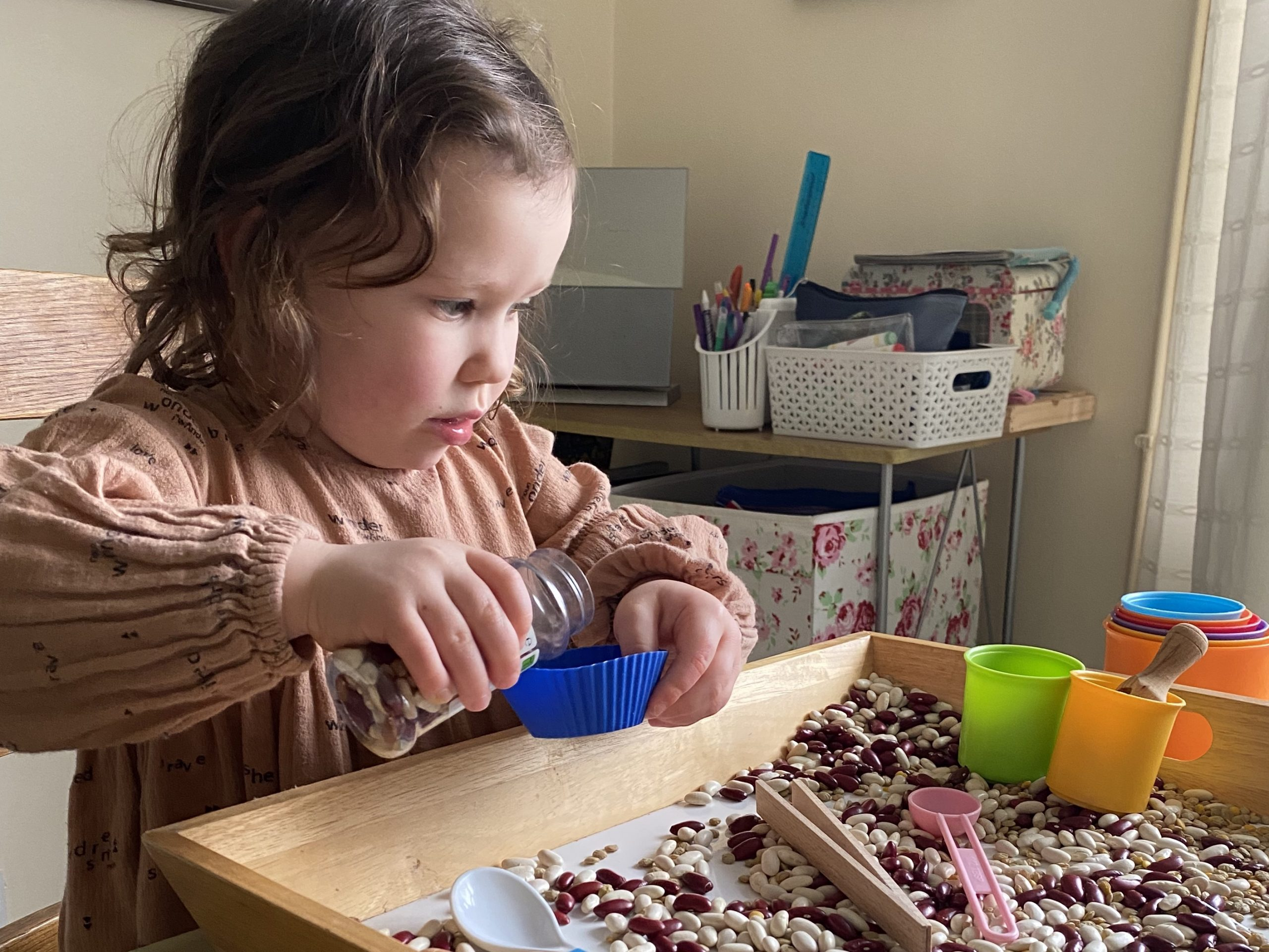 a preschooler doing an indoor activity of scooping and pouring beans
