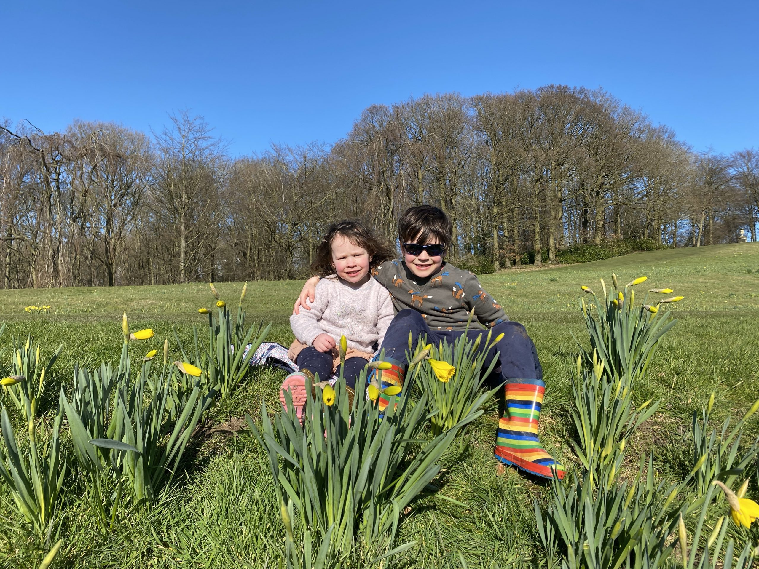 family life with two children sat by daffodils