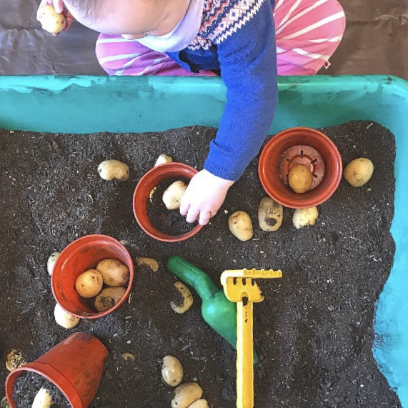 Spring sensory planter tray with mud  and potatoes