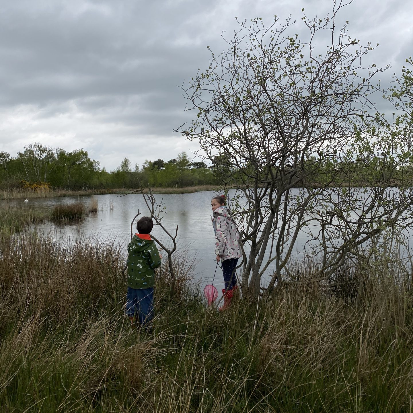 two children out in nature by a pond during lockdown