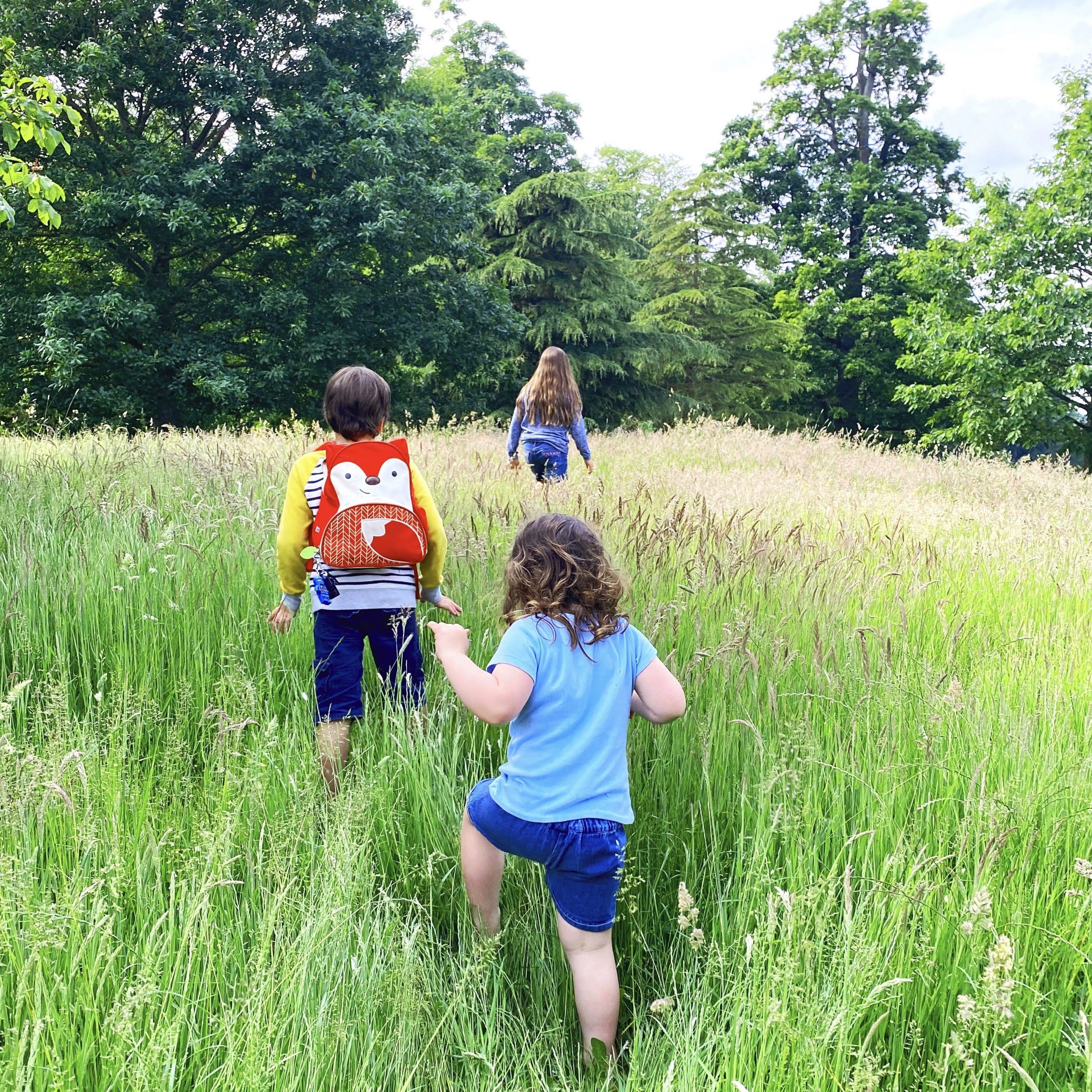 Playing in the long grass at Castle Howard