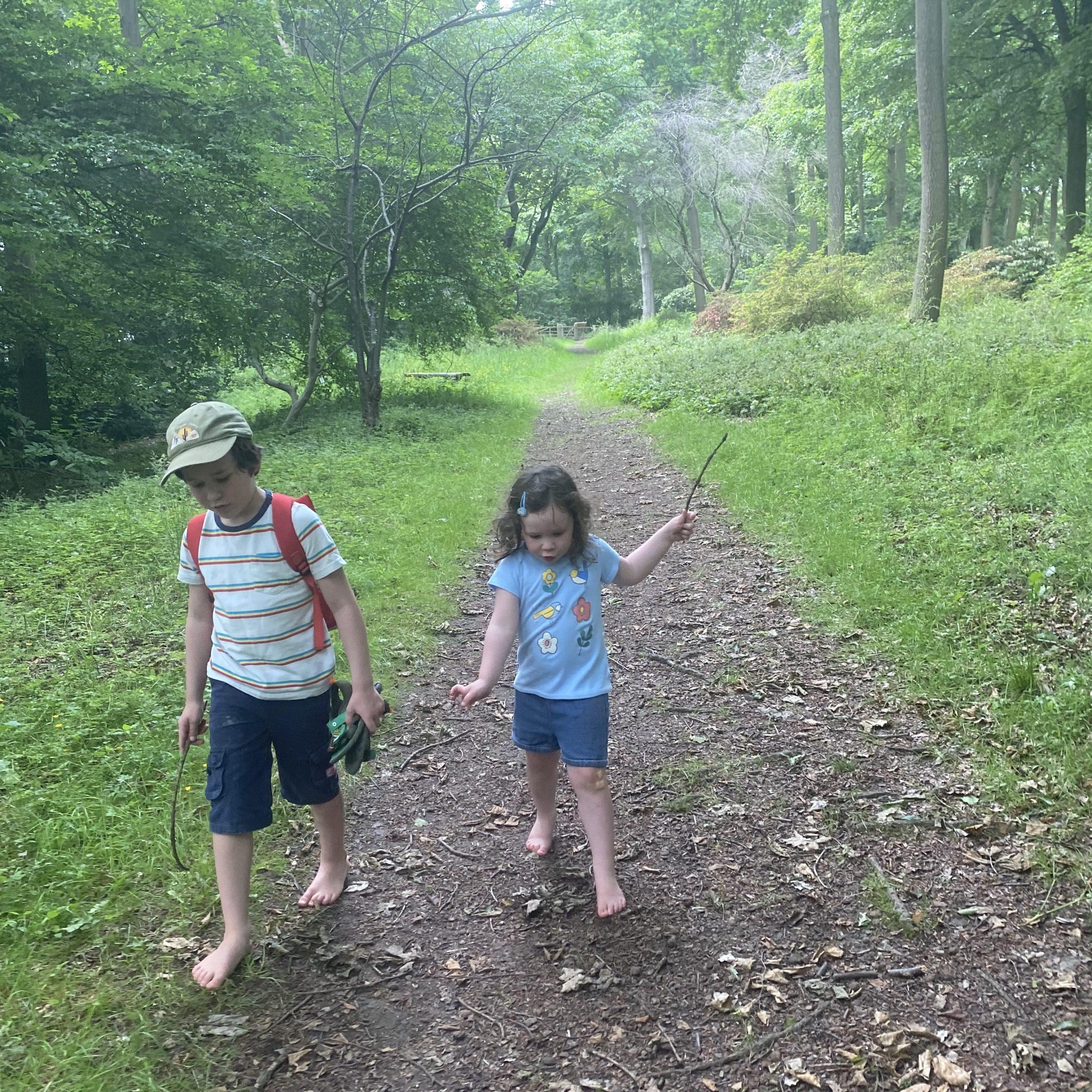 Walking in Castle Howard woods