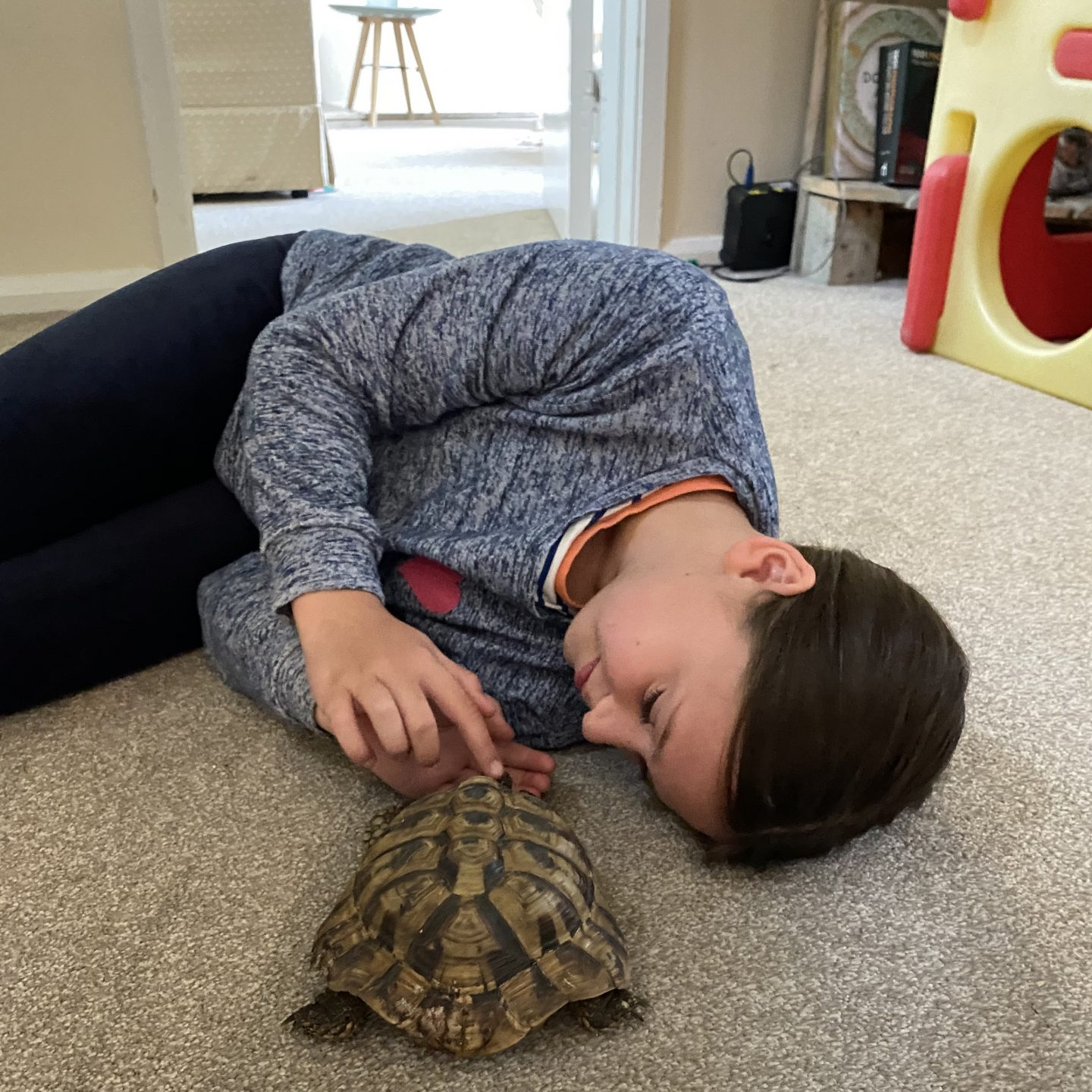 Stepping into our new normal with  girl lying on the floor with her pet tortoise .