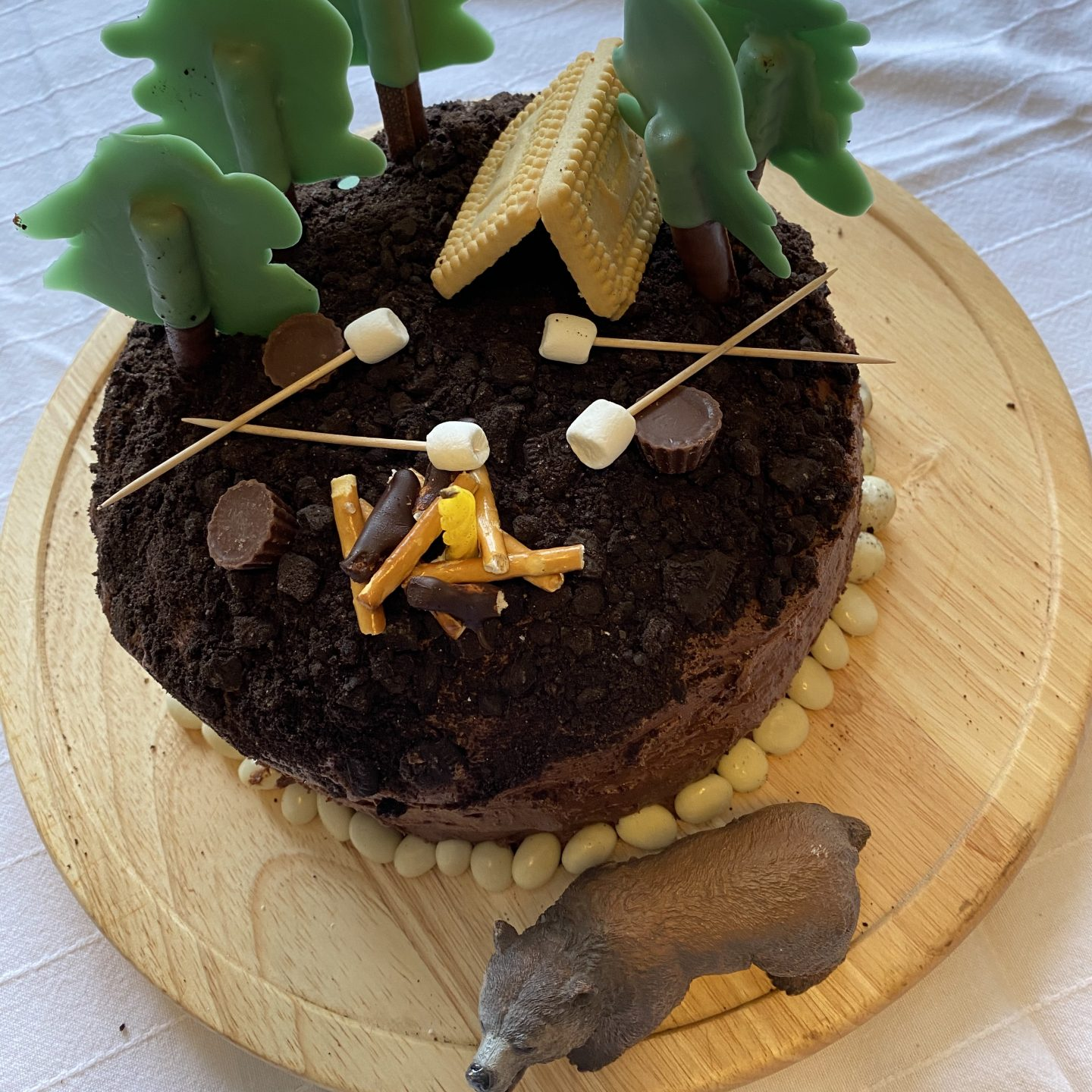 a camping birthday cake with a campfire, trees, stores and a bear