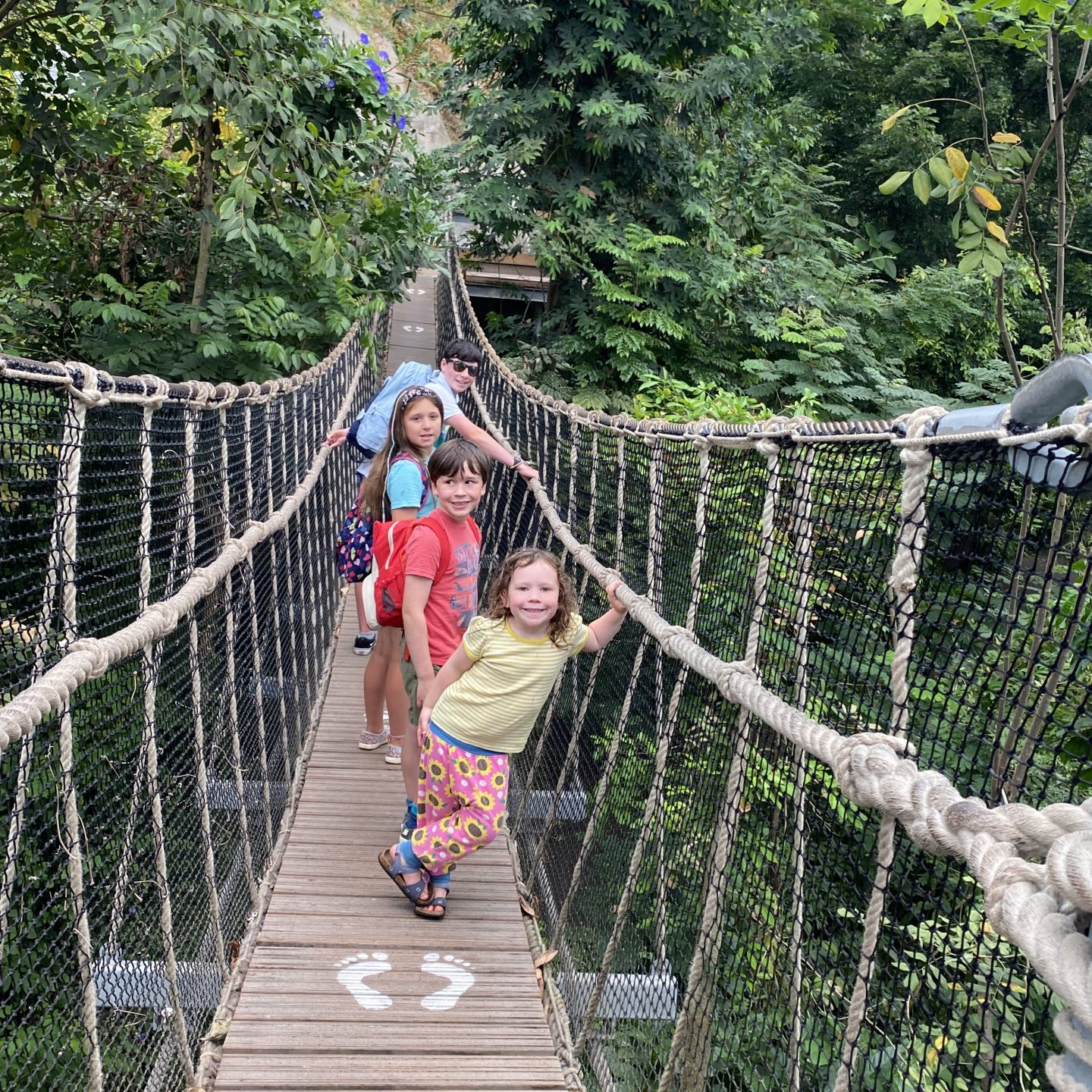 Family Road Trip in Cornwall with 4 kids in the Eden Project