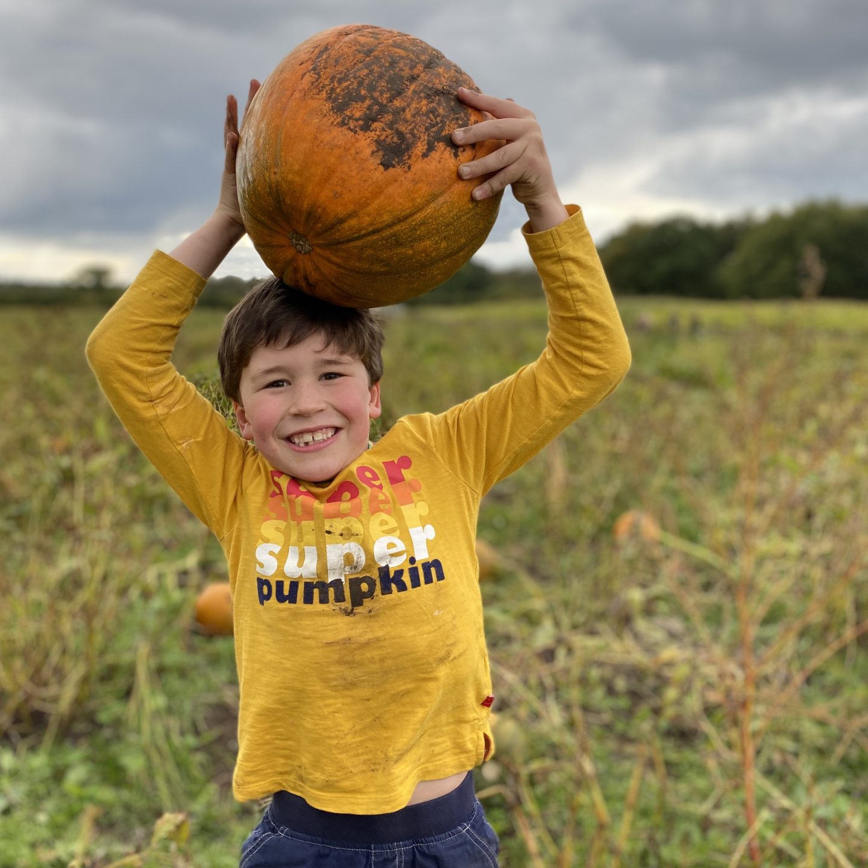 A boy carrying a large pumpkin at the pumpkin festival