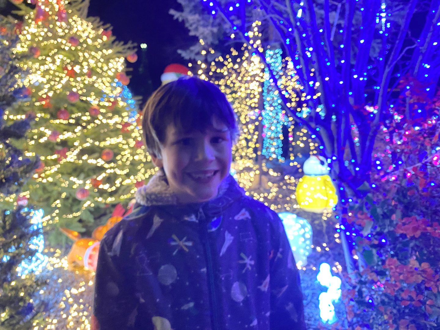 A young boy stood outside by Christmas lights on the Christmas build up