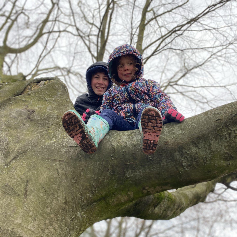 2 children up a tree
